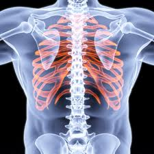Physiotherapy treatments for Ribs Pain